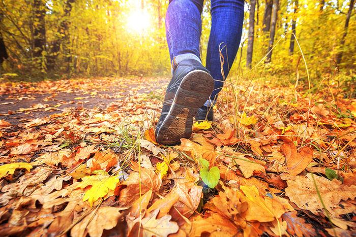 紅葉した枯れ葉の上を歩いている人