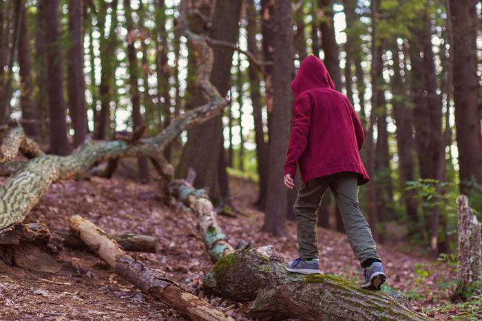 パーカーを着て山の中を歩っている人の写真