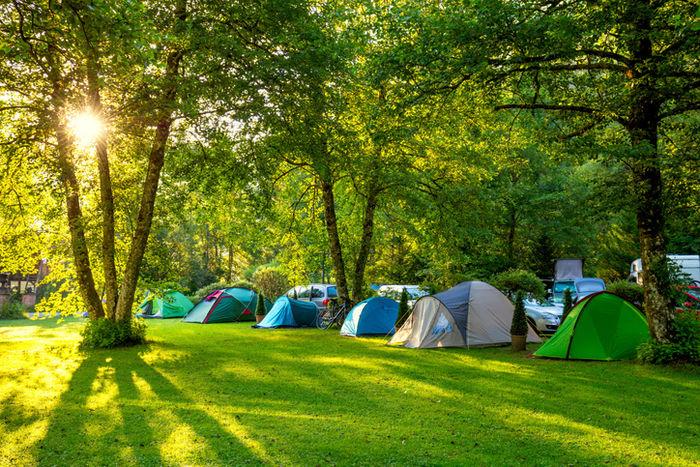 芝生の上にたくさんのテントが張ってある写真