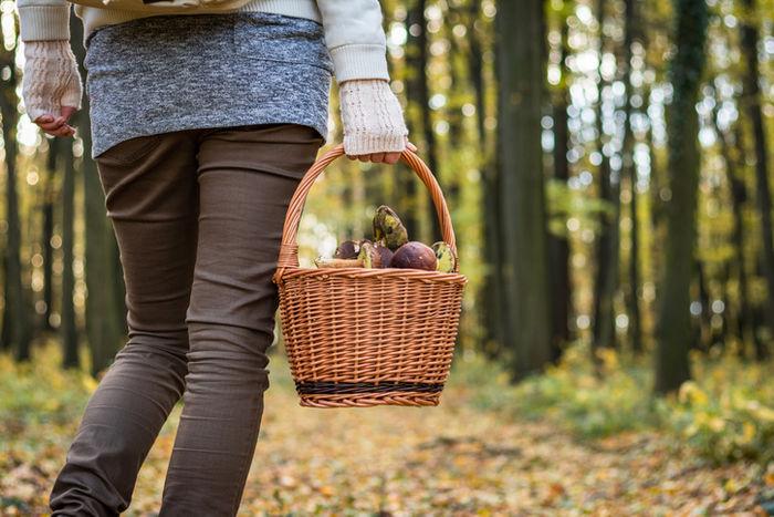 ニットを着てカゴを持って森を歩いている女の人