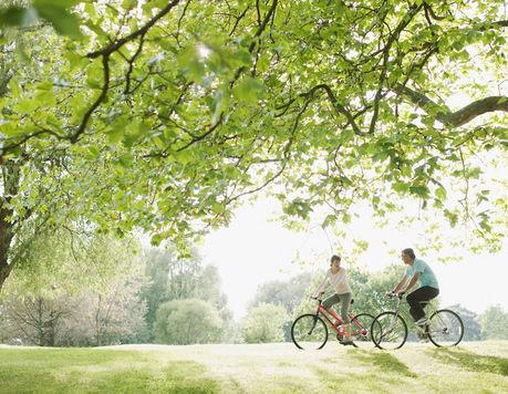 晴れた自然豊かな場所をサイクリングしている夫婦