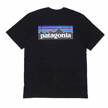 パタゴニアのロゴTシャツ