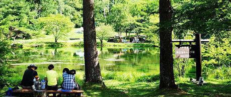 八千穂高原駒出池キャンプ場の風景