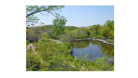 兵庫県神戸市の奥須磨公園