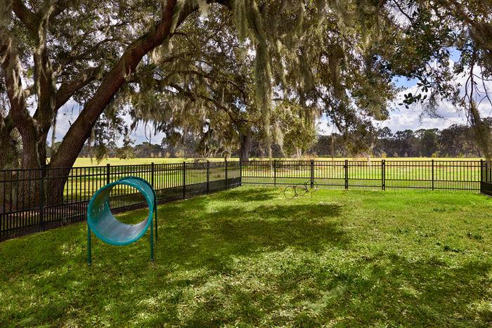芝生が広がっているドッグランの写真