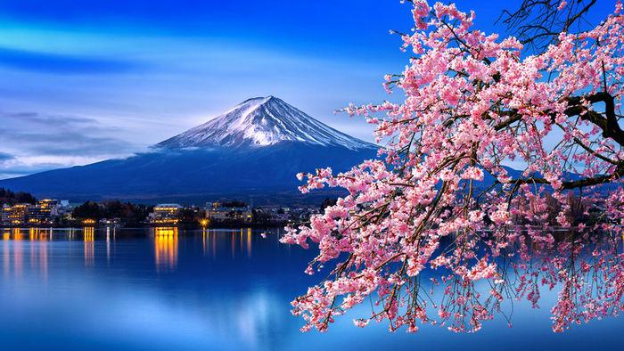 富士山と湖と桜