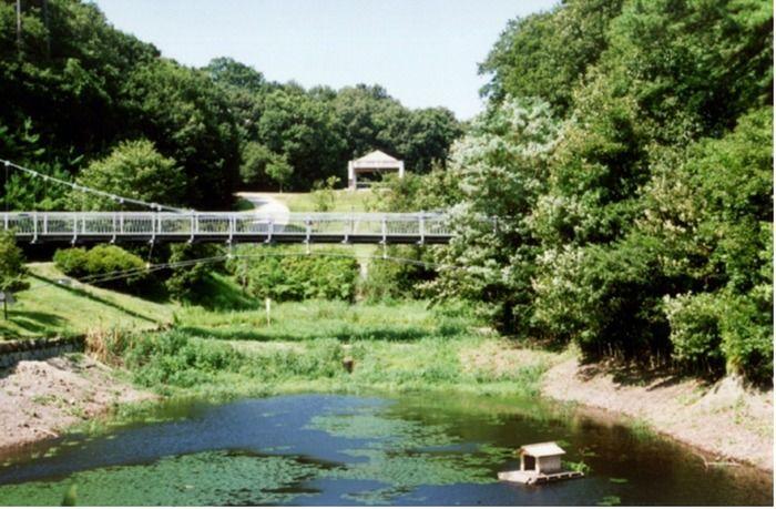 早島町ふれあいの森公園の池と橋の写真