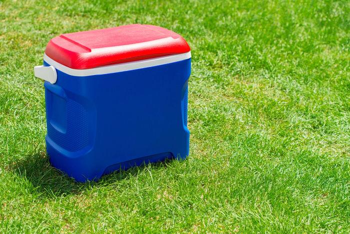 芝生の上に置いてあるクーラーボックスの写真
