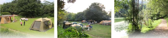 池の山キャンプ場のテントサイト