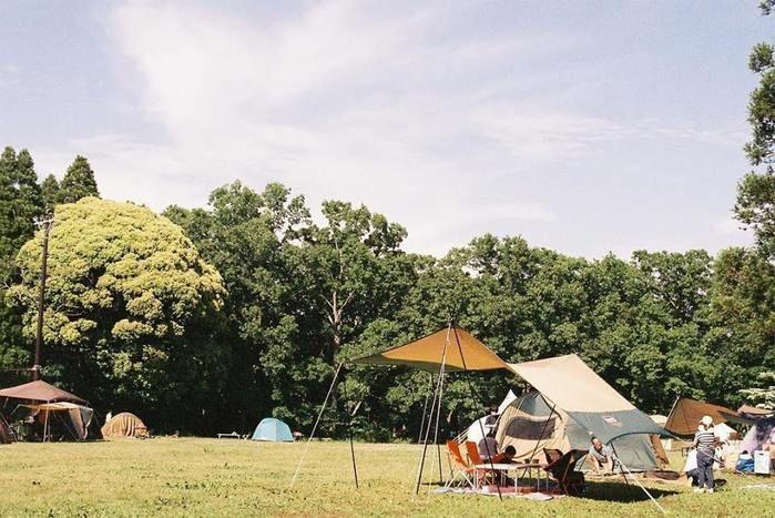 昭和の森フォレストビレッジでのキャンプの様子