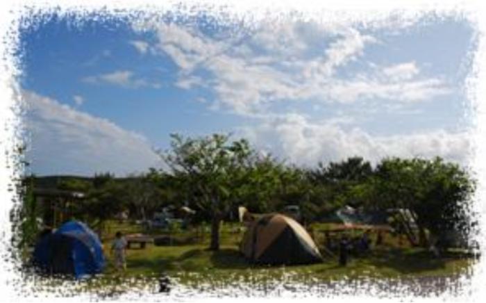 やんばる学びの森のオートキャンプ場