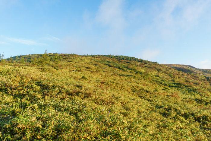 白根山の写真
