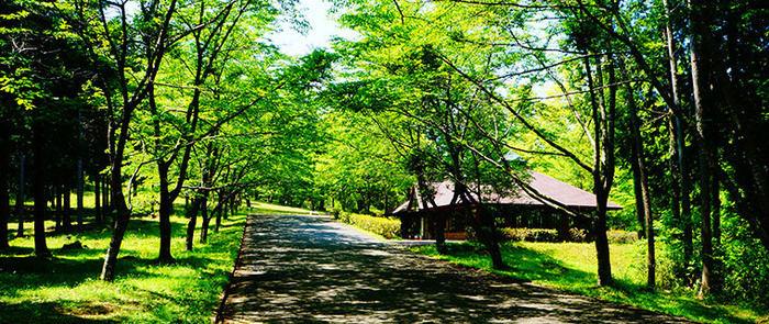 秋吉台家族旅行村の様子