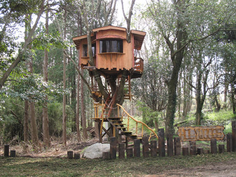 ホウリーウッズ久留里キャンプ村のツリーハウス