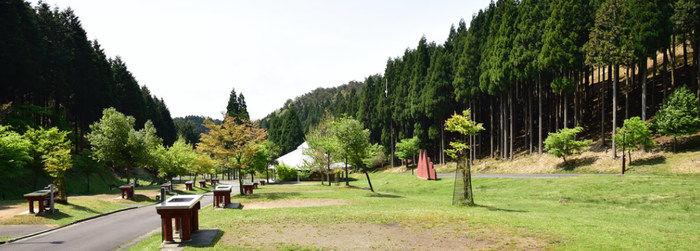 フォレストステーション波賀キャンプ場の様子