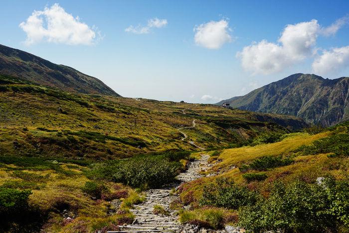 紅葉した立山連峰の写真