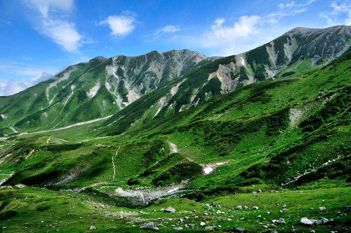 綺麗な緑の山の写真
