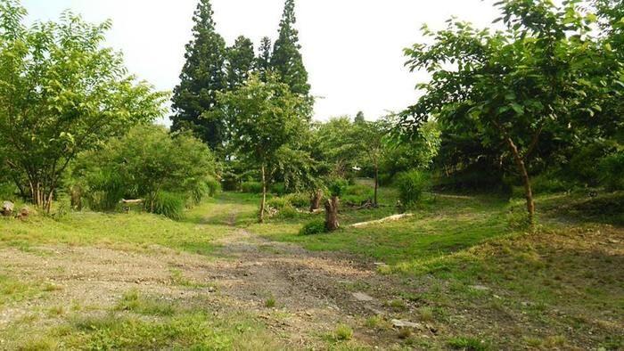 くりの木キャンプ場の中央エリア方面の様子