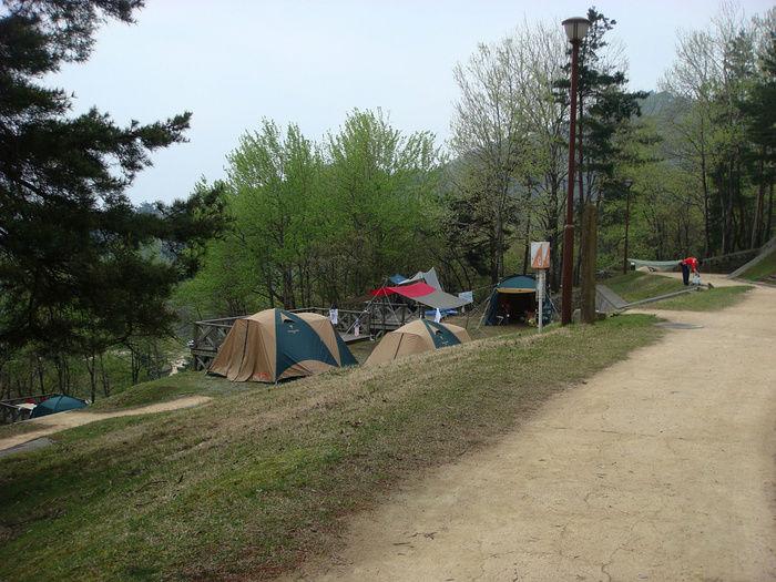 マキノ高原でのキャンプの様子
