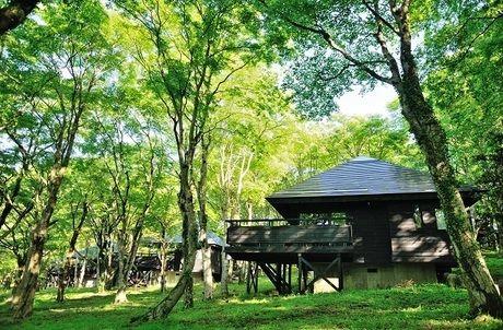 芦ノ湖キャンプ村レイクサイドヴィラのコテージ外観