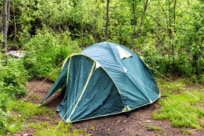森の中に貼ってあるテントの写真