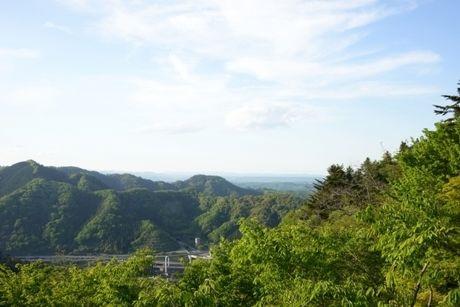 高尾山の様子