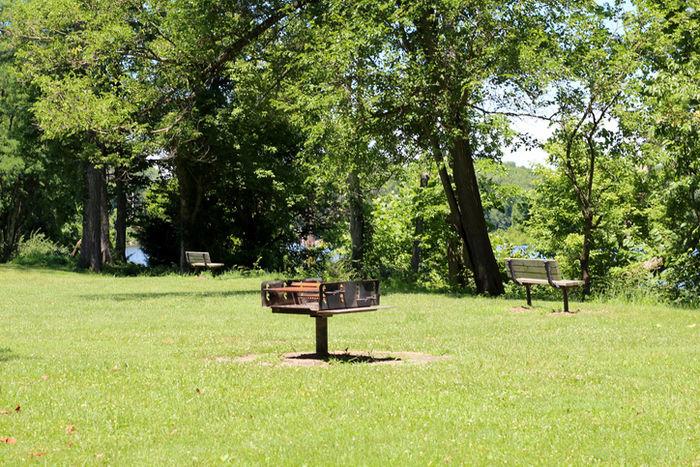 芝生のバーベキュー広場の写真