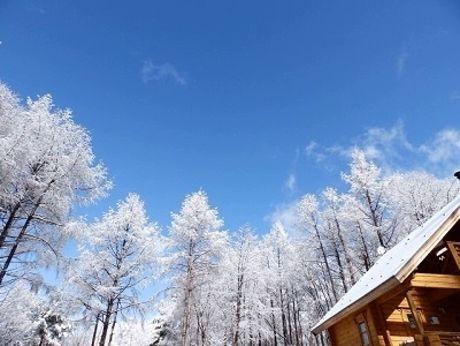 あさまの森オートキャンプ場の雪景色