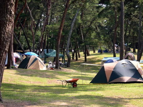 大洗キャンプ場の様子