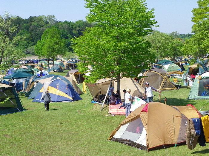 涸沼自然公園キャンプ場の様子