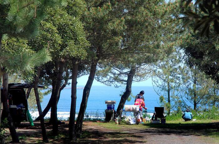 大洗サンビーチキャンプ場の様子