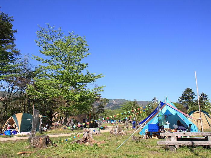 神鍋高原キャンプ場のキャンプ場のキャンプ風景