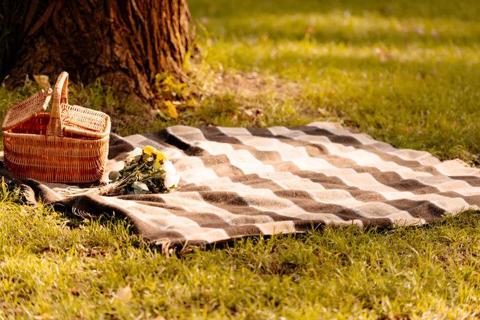 芝生に毛布を引いてピクニックの準備をしている様子の写真