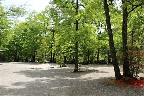 篠沢大滝キャンプ場のサイトの様子