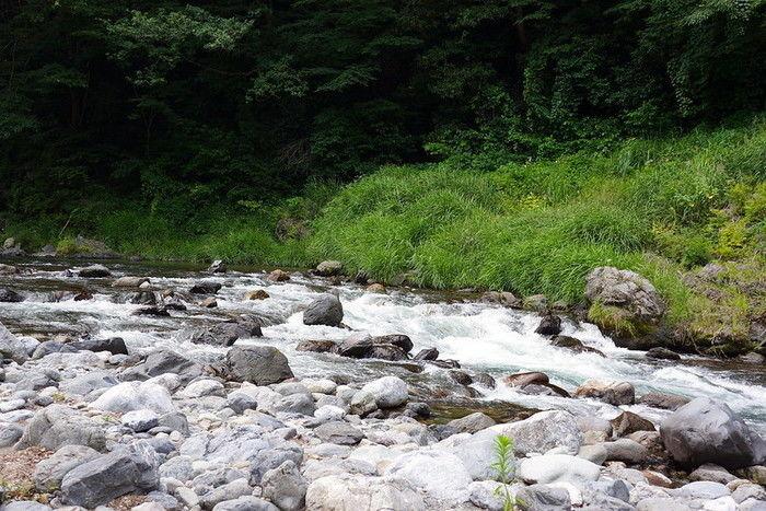 氷川キャンプ場の川
