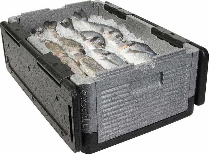 フリップボックスに魚が入っている様子