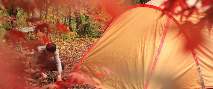ほうれんぼうの森キャンプ場の紅葉の様子