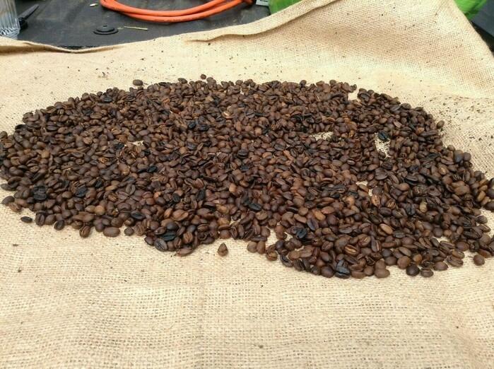 カウコーヒーの豆