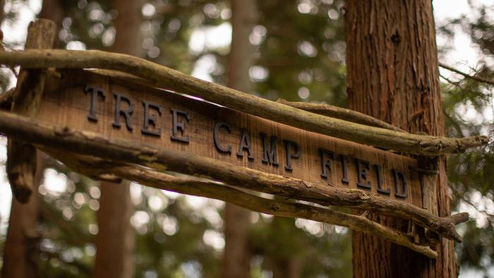 TREE CAMP FIELD