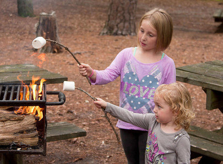 木の枝に刺したマシュマロを焚き火にかざす女の子たち