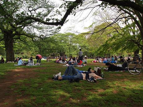代々木公園でくつろぐ人々