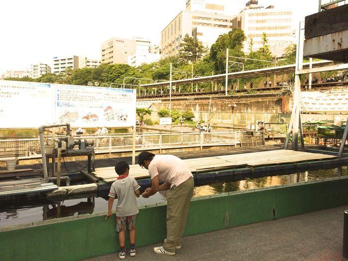 市ヶ谷 フィシュセンターの釣り堀を除く親子