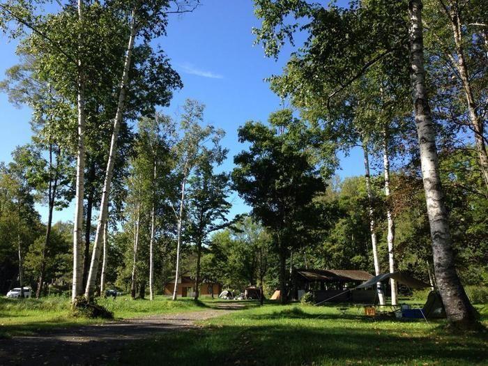 木々に囲まれたニニウキャンプ場