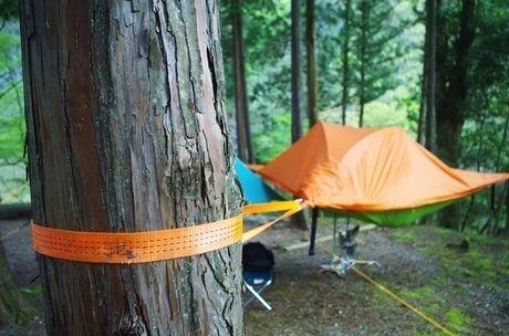 木の幹に巻きつけられたテントサイルのロープ