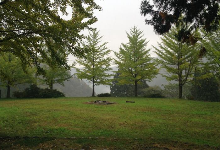 五箇山国民休養地相倉キャンプ場の様子