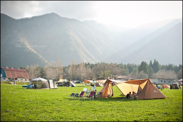 フリーサイトキャンプ場の様子