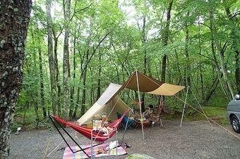 木洩れ日と清流のキャンプ場の雑木林のサイト