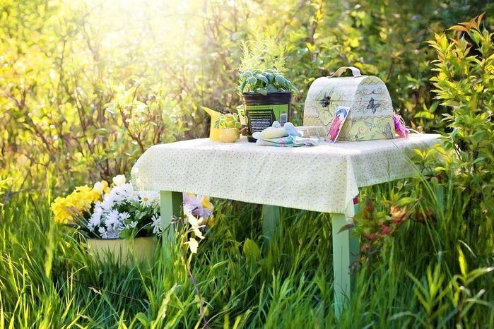 緑に囲まれたピクニックの様子