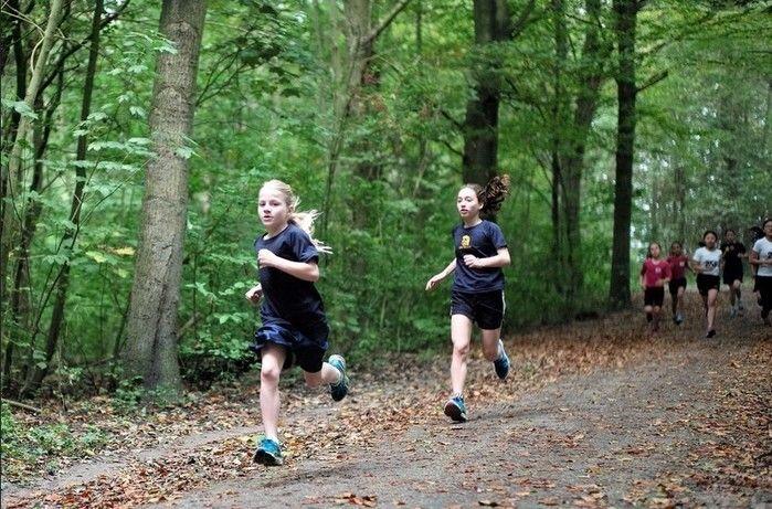 森の中を走る子供たち