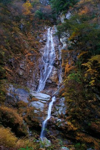 篠沢大滝キャンプ場の滝